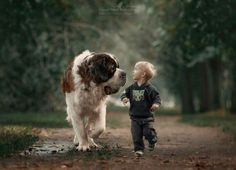 Heartwarming Photos of Little Kids and Their Big Dogs Dogs And Kids, Animals For Kids, Animals And Pets, Baby Animals, Funny Animals, Cute Animals, Child And Dog, Huge Dogs, I Love Dogs