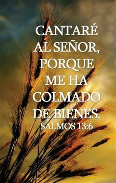 Faith Quotes, Wisdom Quotes, Bible Quotes, Me Quotes, Bible Verses, Gloria In Excelsis Deo, Good Morning In Spanish, Christian Verses, In Christ Alone