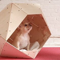 Despite its faceted, angular appearance, this modern doghouse is quite easy to construct. (via HomeMade Modern)
