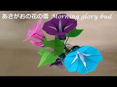 折り紙 あさがおの花の蕾(立体) 折り方(niceno1)Origami flower Morning glory bud tutorial - YouTube