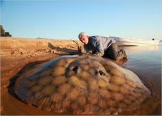 River Monsters' Jeremy Wade