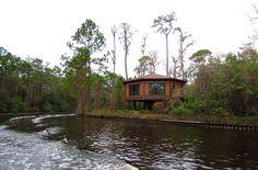 Disney Treehouse Villas | Disney's Treehouse Villas 020611 | Flickr - Photo Sharing!