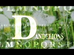 BBC TV NatureSeries Google Tv, Global Tv, Bbc Tv, Letter D, Earthship, Life Skills, Just Do It, Gardening, Messages