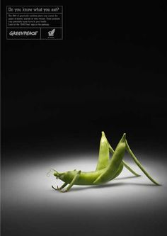 Greenpeace advertisement. Greenpeace is using insects and vegetables to challenge readers to think about the impact of genetic engineering on their food.