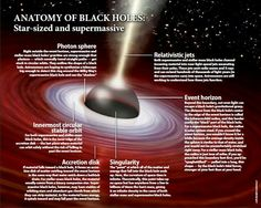 Anatomy of Black Holes