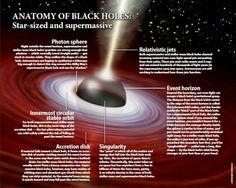 Anatomy of Black Holes