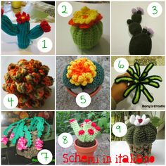 Free pattern cactus amigurumi crochet. Uncinetto cactus schemi gratis.