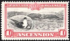 Sooty Tern stamps - mainly images - gallery format