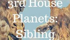 12th House Planets - Astro Numbers Zodiac Houses, Astrology Chart, Planets, Numbers