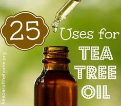 25 Extraordinary Uses for Tea Tree Oil for Healthy Living. Tea tree oil is know for its antiseptic, anti-fungal and antibiotic properties.