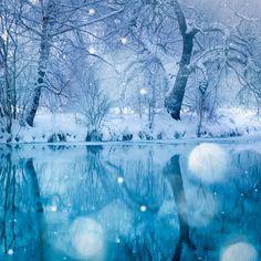 美しい雪の世界