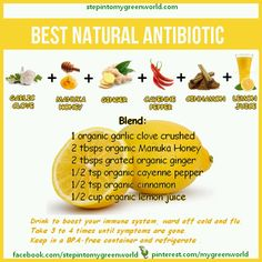 Best natural antibiotic to boost your immune system                                                                                                                                                                                 More