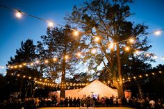 Best wedding lighting ideas images in lighting ideas
