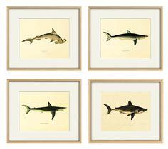 Shark art print Nautical art print set ocean by AntiqueWallArt
