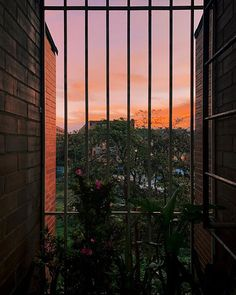 Lets see beyond the walls! Skyscraper, Shots, Walls, Window, Let It Be, Sunset, Orange, Nature, Photography