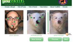 Trasformati in un animale con Youwild -> http://www.creareonline.it/2008/08/trasformati-in-un-animale-con-youwild-00629.html By Creareonline.it