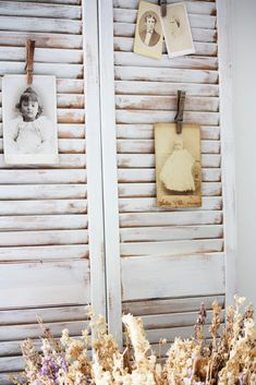 vintage photo display shabby shutters with clothes-pinned cabinet cards
