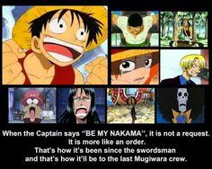 Anime/manga: One Piece Characters: Luffy, Zoro, Usopp, Nami, Sanji, Chopper, Robin, Franky?, and Brook, MUGIWARA CREW!