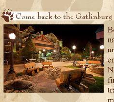 So excited!!! ❤ Bearskin lodge Gatlinburg TN
