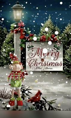 Christmas Animated Gif, Christmas Tree Gif, Winter Christmas Scenes, Merry Christmas Message, Merry Christmas Pictures, Christmas Scenery, Christmas Blessings, Christmas Wishes, Christmas Greetings