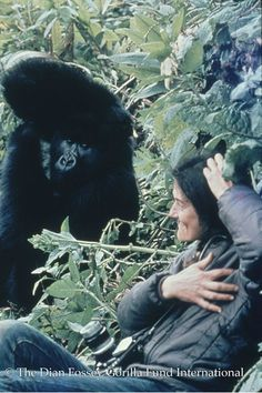 Dian Fossey, studied gorillas in Rwanda and started what is now known as the Dian Fossey Gorilla Fund International which enables anti-poaching patrols to protect the gorillas.