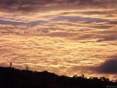 Pôr do sol dourado.