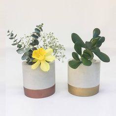%40 İndirimli kupon kodunuzu DM yoluyla  öğrenebilirsiniz! 🤗  #betonsaksı #beton #saksı #sukulent #hediyelik #söz #kına #nişan #düğün #hediye #dekor #dekorasyon #kaktüs Modern Planters, Indoor Planters, Planter Pots, Smart Kitchen, Life Kitchen, Vase Centerpieces, Vases Decor, Flower Vases, Flower Pots
