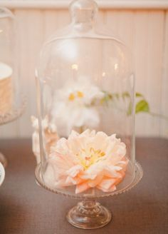 pretty cloche & pedestal idea
