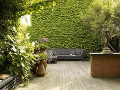 The texture of the tree on the right and the wall. The size of the wall, the ivy appearing to be like cascading water. A deep sense of privacy