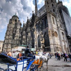 A horse drawn carriage outside St Stephens Cathedral in Vienna Austria. #everythingeverywhere by everythingeverywhere