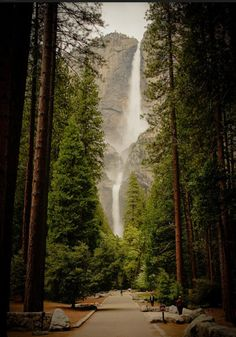 Yosemite National Park, California-  Spectacular views and waterfalls