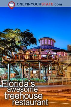 Travel | Florida | Attractions | USA | East Coast | Places To Visit | Weekend Getaway | Things To Do | Places To Stay | Beautiful Places | Vacations | Outdoor | Adventure | Treehouse | Unique Hotels | Destinations | Delicious | Food | Restaurants | Places To Eat | Tasty | Dining | Outdoor Dining | Treehouse Restaurant | Hidden Gems