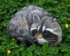 A Wonderful Life-Sized Rock Painted Raccoon!   A Unique Piece of Art Totally Hand Painted and Signed by Roberto Rizzo