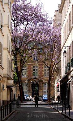 """""""Place Furstenburg, Paris """""""