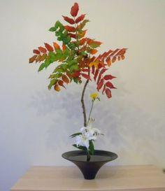 Ikenubo Shoka Shimputai Ikebana Ikebana Arrangements, Ikebana Flower Arrangement, Floral Arrangements, Japanese Flowers, Japanese Art, Bonsai, Ancient Art, Flower Art, Succulents