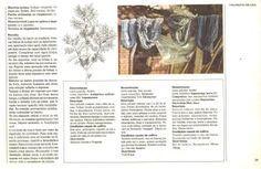 """TINGIMENTO NATURAL & CORANTES NATURAIS   """"... A Tecelagem Artesanal por Rodrigo *O Tecelão!... """" Tinta Natural, Tye Dye, Shibori, Arts And Crafts, Around The Worlds, Nature, Prints, Tear, Stamping"""