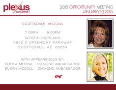 Friday Opportunity Meeting, Jan 9th, 2015 | Scottsdale, Arizona | Presenters: Sheila Medina and Susan McColl