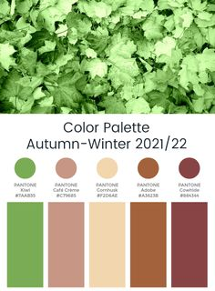 Potential Colours for Fall Color Palette, Colour Pallete, Color Combos, Color Pairing, Dark Autumn, Fall Winter, Fall 2017 Colors, Winter Colors, Fall Fashion Colors