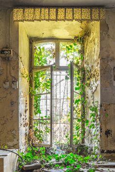 Ein verlassenes Kloster in Deutschland - ein Lost Place der wirklich besonderen und gruseligen Art. Hier zeigt sich wie die Natur alles wieder zurückholt.