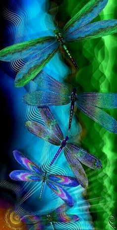 New Ideas wallpaper backgrounds beautiful butterfly Dragonfly Quotes, Dragonfly Images, Dragonfly Tattoo Design, Dragonfly Art, Dragonfly Wallpaper, Dragonfly Tatoos, Dragonfly Drawing, Tattoo Designs, Beautiful Bugs