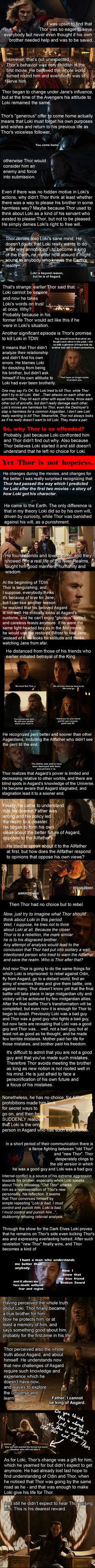 Interesting. Not sure I totally agree, at least on Loki's side, but interesting nonetheless.