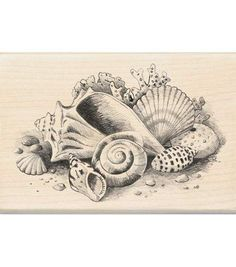 Inkadinkado® Rubber Stamp-Seashells Still Life