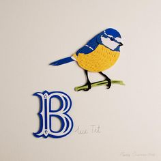 Looking forward to seeing my work in the winter exhibition at Gallery Fifty Five tomorrow. If you're near Hartley Wintney in Hampshire pop along as all the artists will be around to chat! #papercutting #exhibition #birds #galleryfiftyfive #bluetit...