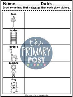 Teaching Measurement, Kindergarten Measurement, teaching height, length, weight, capacity, Measurement Worksheets Measurement Kindergarten, Measurement Worksheets, Teaching Math, Names, Teacher, Student, Activities, Education, Shop