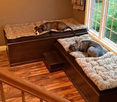 "This home has ""doggone"" good design! This design, by Kendra Roenker of Modern Builders Supply, makes pet care easy for the owners, and luxurious for the dogs. The amenities go way beyond the basics. The faucet is placed above the water bowls—no more toting water from the kitchen sink and leaving a wet trail behind. The beds aren't just beds—they are raised beds with stepping stools. The feeding station holds toys, food, leashes and dog grooming tools."