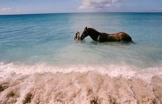I want to ride a horse in the ocean!!