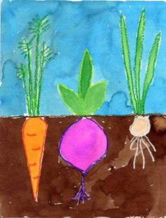1. On watercolor paper, students draw in pencil a horizontal line across the middle of the page. They add a variety of underground vegetables below (carrots, beets, scallions, etc.) and stems and leaves above. 2. All pencil lines are traced with a crayon, pressure is needed to create dark lines. 3. The vegetable shapes are painted in with watercolor paint. When complete, the ground, leaves and sky are painted as well.