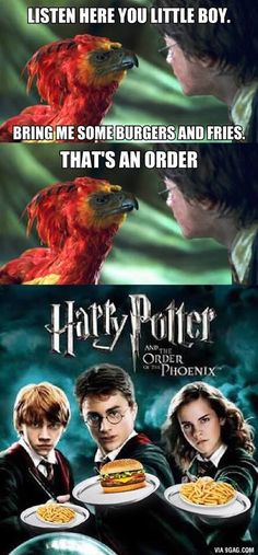 Lol I love this. It's a good thing we're getting new Harry Potter material this year. Humour Harry Potter, Harry Potter Fandom, Harry Potter World, Harry Potter Things, Phoenix Harry Potter, Harry Potter Quidditch, Harry Potter Characters, Hogwarts, Doug Funnie