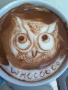 Owl latte art - I wouldn't want to drink it :P