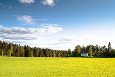 house green field  sunny day  finland scandinavia summer rural meadow green grass farm garden home cabin tree warm agriculture cloud day field culture #SergeyProFineArtPhotography #ArtForHome #FineArtPrints #InteriorDesign #Landscape #Nature